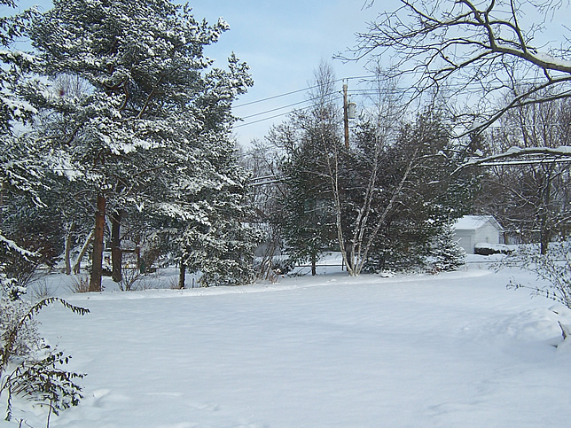 Snow at home before trip
