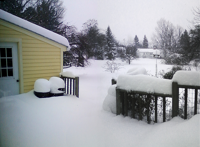 Composite of snow in yard