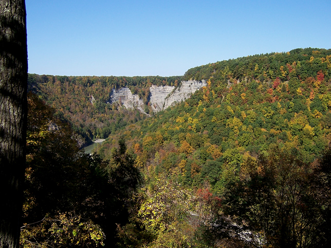 Letchworth rim