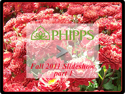 Phipps Fall 2011 part 1 slideshow